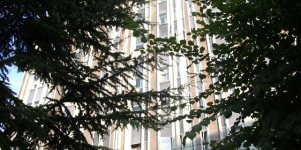 International Business Center Bologna