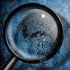 Webinar: Raccogliere informazioni online sui potenziali clienti. Ediz. 14/02/18